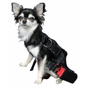 Dog On Life - Sikkerhedssele til bilen