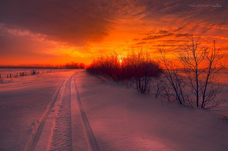 Path to Beautiful by Ian McGregor on 500px