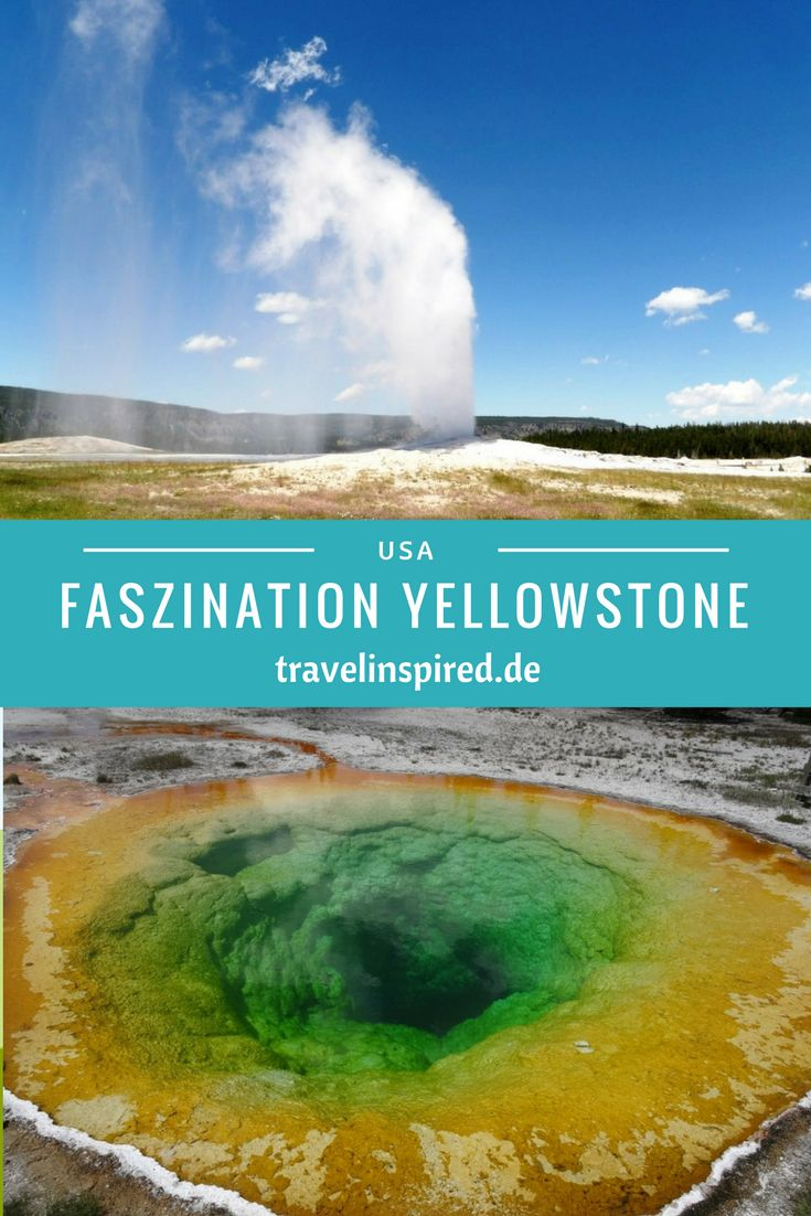 Yellowstone Nationalpark: Dampfende Geysire, sprudelnde Mud Pots, knallbunte Thermalbecken. Bisonherden, Grizzlys und Wapitis. Das alles und noch viel mehr bietet der älteste Nationalpark der USA.