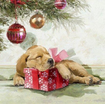 Новогодние картинки с собачками