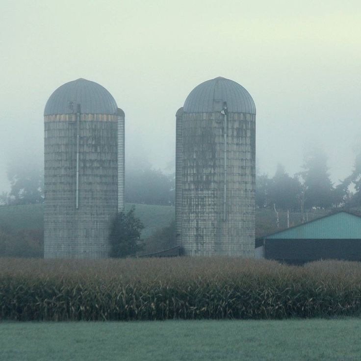 Rural skyscrapers . . . . . #RURAL #countryside #RURALMAGAZINE #rurallife #RuralLove #ItsNotWhereYouLiveItsHow #onlinemagazines #Midlifewomen #magazine #LiveUrbanLoveRural #ReadRURAL #countrytreasures #foggyworlds #silos #farmland #fields #InstaOkanagan #farming #farm #ruralareas http://ift.tt/2doM79T Visit www.ruralmag.com a free online magazine for #midlife women. It's not where you live it's how.