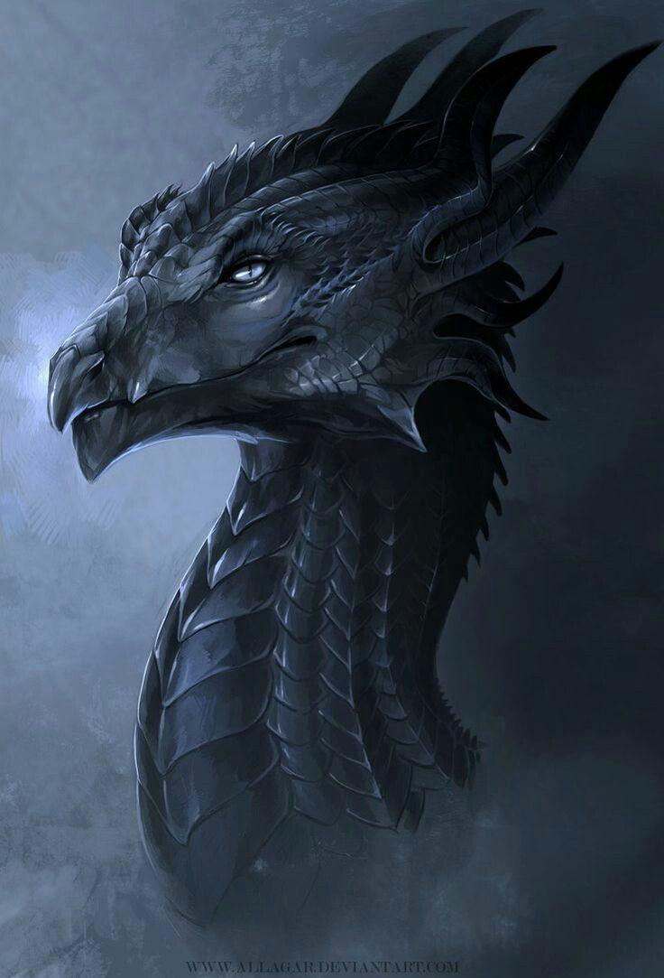 Black Dragon - The Nightmare Descends - DN SEA