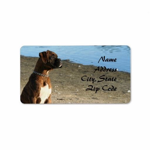 >>>Cheap Price Guarantee          	Brindle Boxer dog Address Labels           	Brindle Boxer dog Address Labels online after you search a lot for where to buyDiscount Deals          	Brindle Boxer dog Address Labels please follow the link to see fully reviews...Cleck Hot Deals >>> http://www.zazzle.com/brindle_boxer_dog_address_labels-106389790453610973?rf=238627982471231924&zbar=1&tc=terrest