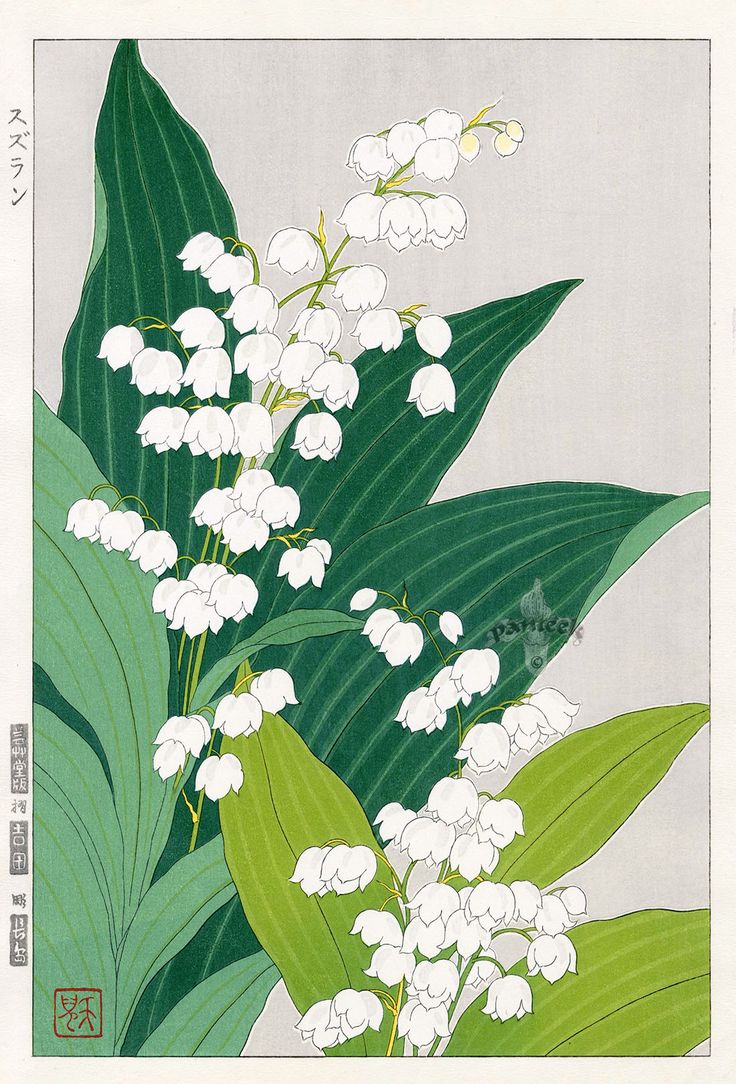 Lily of theValley by Teru Kuzuhara from Shodo Kawarazaki Spring Flower Japanese Woodblock Prints