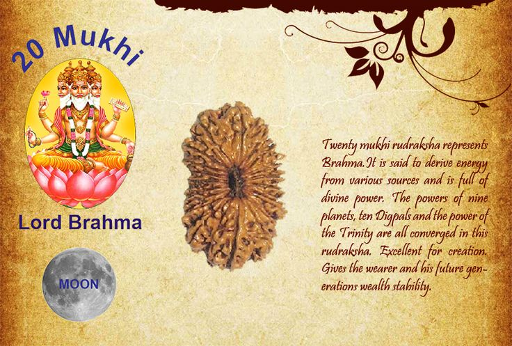 Benefits of Twenty Mukhi Rudraksha:  God: Lord Brahma / Planet: Moon Twenty mukhi rudraksha represents Brahma.It is said to derive energy from various sources and is full of divine power. The powers of nine planets, ten Digpals and the power of the Trinity are all converged in this rudraksha. Excellent for creation. Gives the wearer and his future generations wealth stability.  http://www.rudralife.com/Rudraksha/details.php?id=40