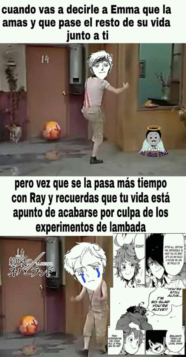 Pin De Rosi Chan En The Promised Neverland Meme De Anime Memes De Anime Memes Divertidos