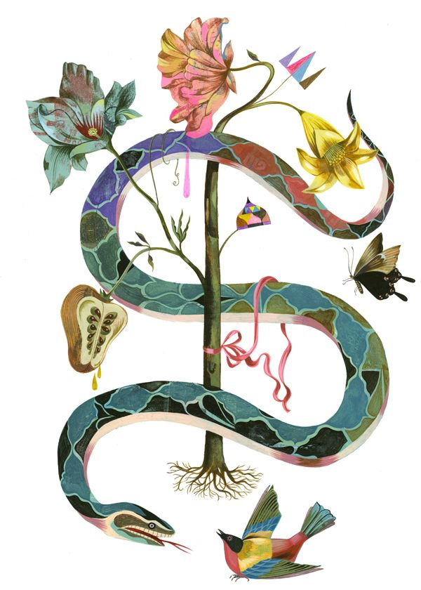 S is for snake, Olaf Hajek | the small print