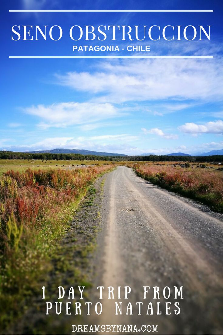 Visit something different if you are in Puerto Natales, Patagonia: Take the scenic road to Seno Obstrucción, Región de Magallanes y Antártica Chilena, Chile. (scheduled via http://www.tailwindapp.com?utm_source=pinterest&utm_medium=twpin&utm_content=post140652173&utm_campaign=scheduler_attribution)