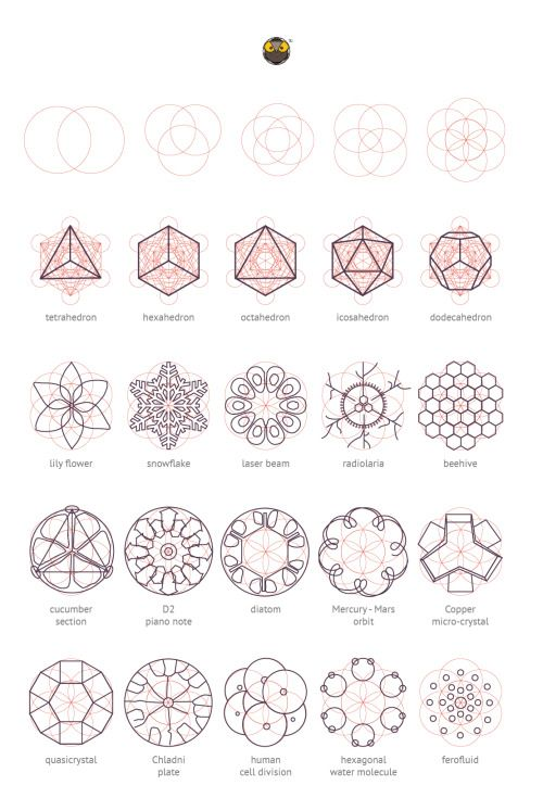 Geometry Matters: Various nature elements that abide by...