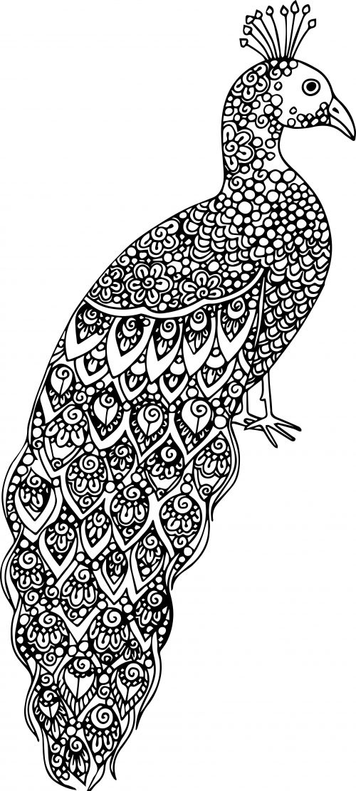 advanced animal coloring page 19