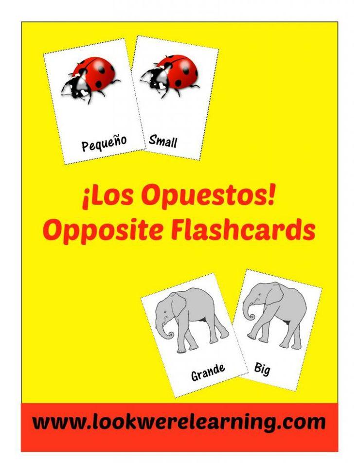Free Spanish Opposite Word Flashcards