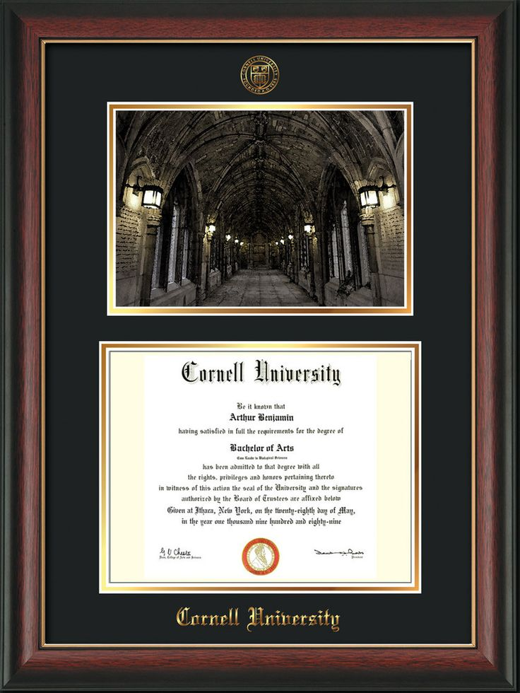 Cornell U Diploma Frame-Rose Gold Lip-War Memorial Photo-Black on Gold – Professional Framing Company