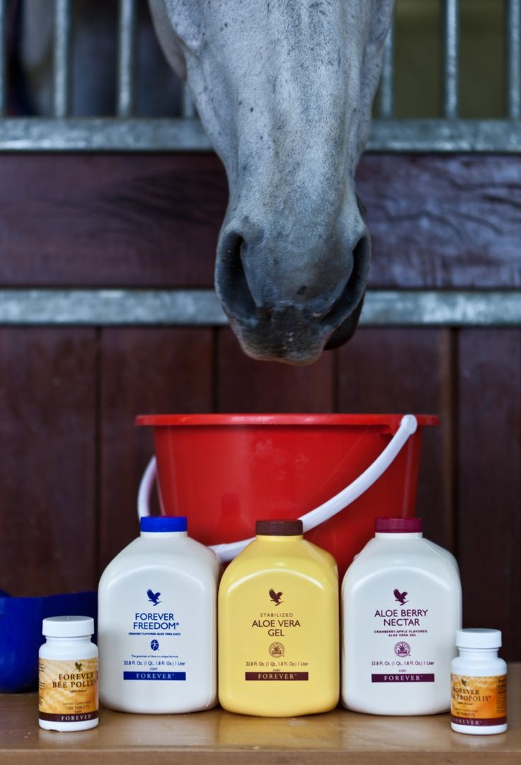 Equestrian https://www.foreverliving.com/retail/entry/Shop.do?store=CAN&language=en&distribID=200002309751