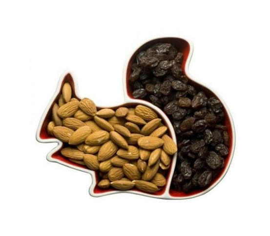 Sagaform - miska wiewiórka Animal
