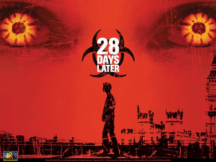 28 Days Later, a zombie horror film, is one of my favorite fairly recent horror movies. 28 Days later stars Cillian Murphy and Brendan Gleeson.