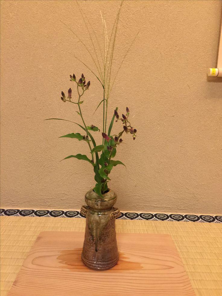 花は、杜鵑草 (ほととぎす)とススキ。