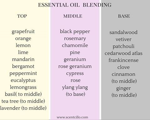 essential oil notes chart - Heartimpulsar