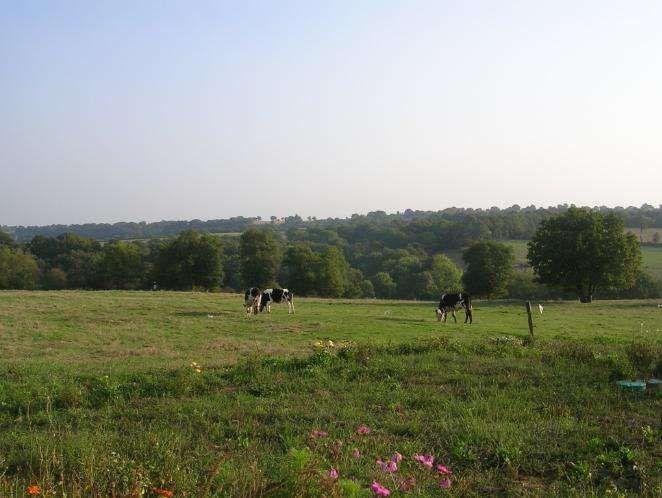 La Seguiniere à Pays de la Loire