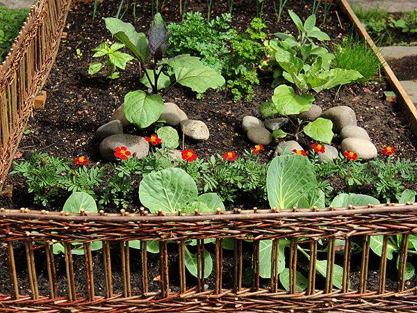 Alicia Paulson's raised garden. 'Twig' fencing.: Container Gardens, Gardens Fence, Cottages Gardens, Raised Gardens, Rai Gardens, Little Gardens, Veggies Gardens, Beautiful Gardens, Gardens Growing