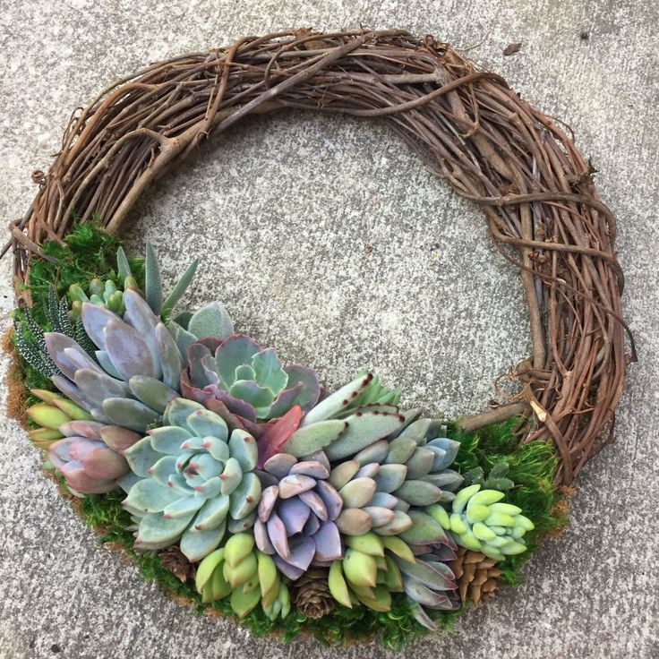 11 New (and Creative) Ways To Show Off Your Succulents
