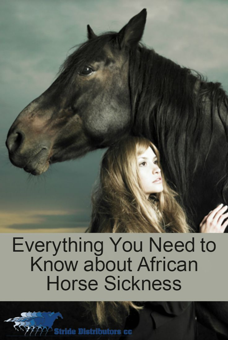 African Horse Sickness and Vaccinations.