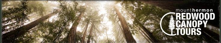 Redwood Canopy Tours, Mt. Hermon, Santa Cruz, California