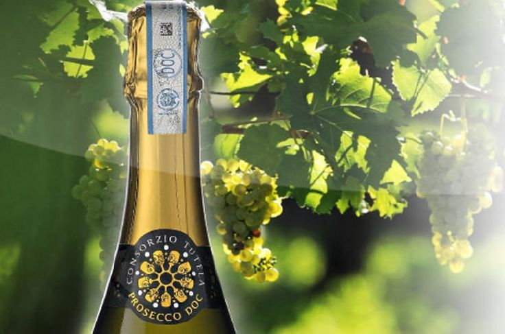 La surface de production du Prosecco DOC s'agrandit