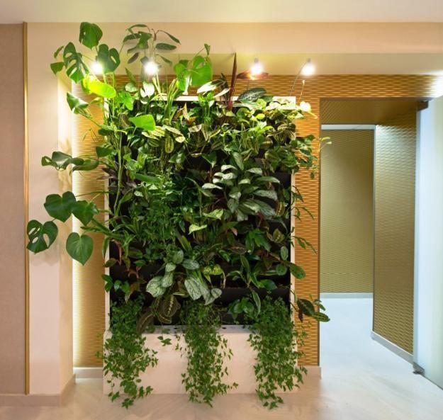 design interior moderno e parede de decoração com plantas verdes