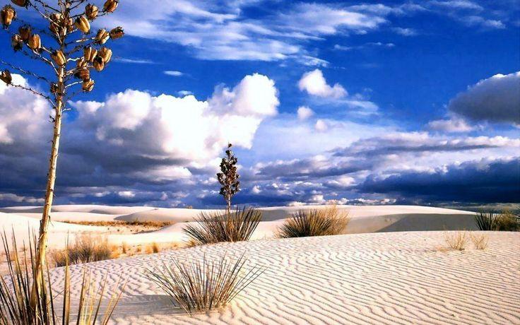 Beautiful Desert Wallpaper Image