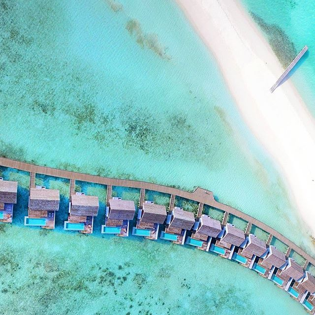 Another day in paradise #maldives #kuramathi #aerial #aerialphotography #drone #dronestagram #birdsphotography #djiphantom #djiglobal #droneview #dronecapture  #paradise #travel #nature #mydrone #phantom4k #droning #dronefootage #dji #dronelovers #travelstoke #worldcaptures #djimavic#wanderlust #travelblogger #reiselust #travelomaldives #visitmaldives #theluxurylife #beautifulmaldives