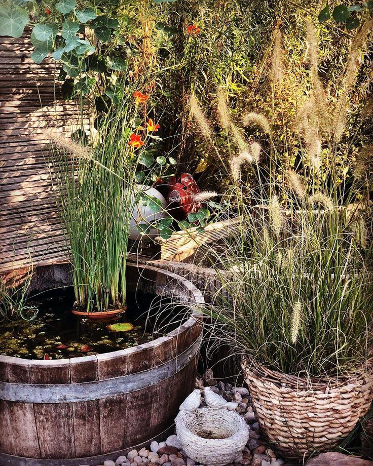 Endlich Feierabend und den Garten genießen! Ich wünsche Euch einen schönen Ab…