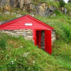 how to build a root cellar in basement