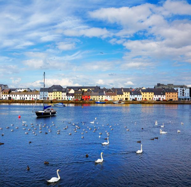 This is Galway Bay in Galway, Ireland.  Seems to be the city of the swans.