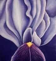 L'illustrazione botanica: arte da ammirare e... sfogliare! Un testo risalente al XVI secolo e che fa da apripista alle opere di van Gogh e di tutti gli altri grandi della pittura.  Ripercorriamo la storia della pittura floreale e di tutte le sue soluzioni  #illustrazioni #design #arte