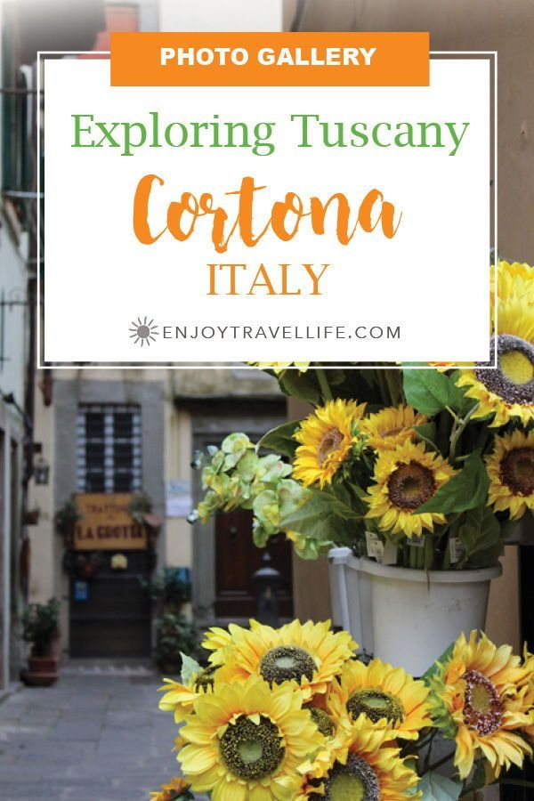 """PHOTO GALLERY 