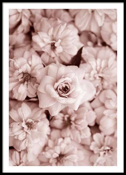 Bed of flowers Poster in der Gruppe Poster / Größen und Formate / 50x70cm bei Desenio AB (2786)