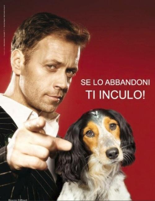 Rocco Sifredi campaña para no abandonar animales...