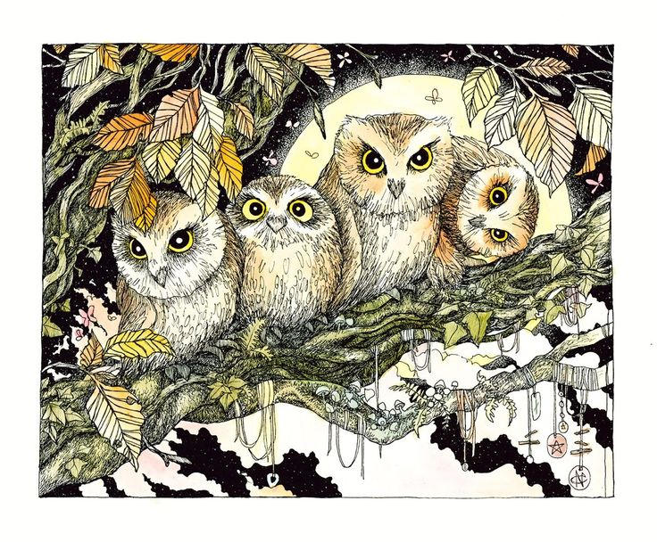 NomeArt — Spirit Animal Series: Owl  To owl I ask, guide me...