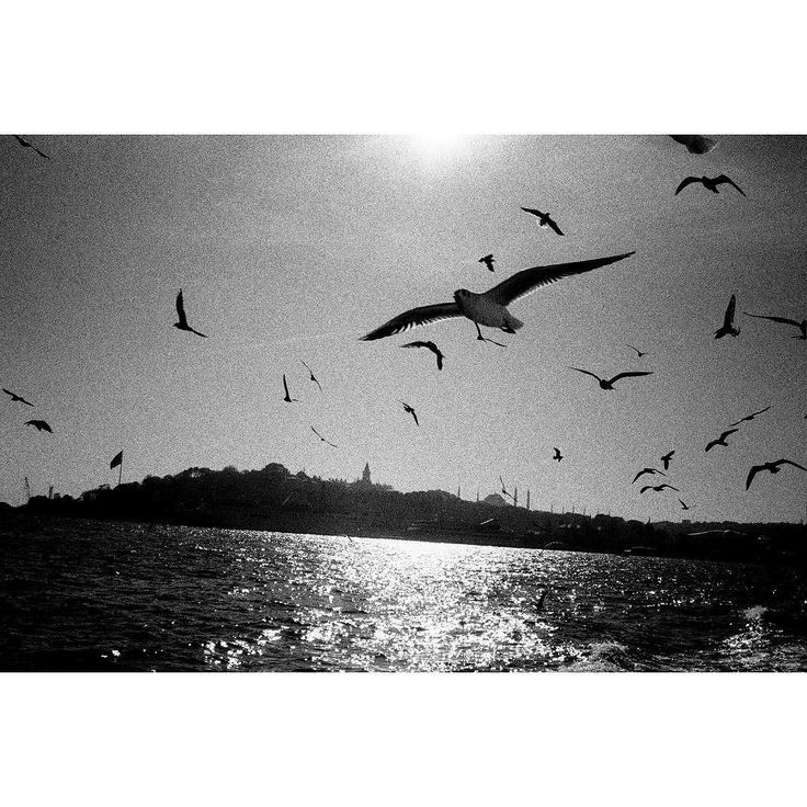 Leaving Istanbul with the Contax T. There was a sunset if you close your eyes you can see it but I only had b&w film. #contax #film #grain #analog #istanbul #bosphorous #blacksea #sunset