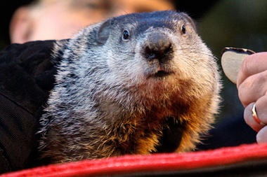 "The first official Groundhog Day was celebrated on February 2, 1886 in Punxsutawney, Pennsylvania, with a proclamation in The Punxsutawney Spirit by the newspaper's editor, Clymer Freas: ""Today is groundhog day and up to the time of going to press the beast has not seen its shadow."" The legendary first Groundhog Day trip to Gobbler's Knob was made the following year by a group of spirited groundhog hunters who dubbed themselves ""The Punxsutawney Groundhog Club."""