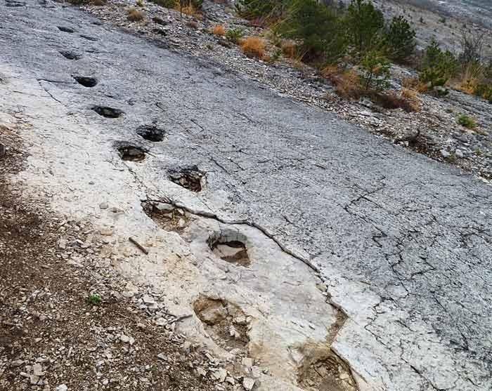 Foto Orme dei dinosauri a Rovereto