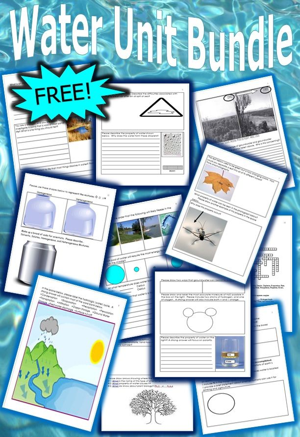 This is a FREE 14 page homework or classwork bundle about the water molecule.  The bundle includes water conservation,  properties of water, the water cycle, solutions, and much more.  Answer key is provided. -Enjoy!