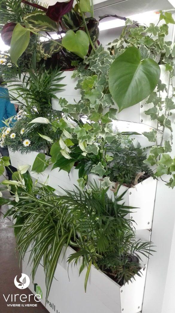 Più di 25 fantastiche idee su Giardini Di Casa su Pinterest  Spazi esterni, Giardinaggio e ...