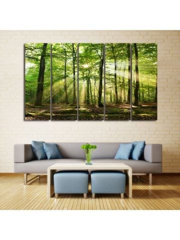 Sunlight Forest Print Unframed Canvas Paintings
