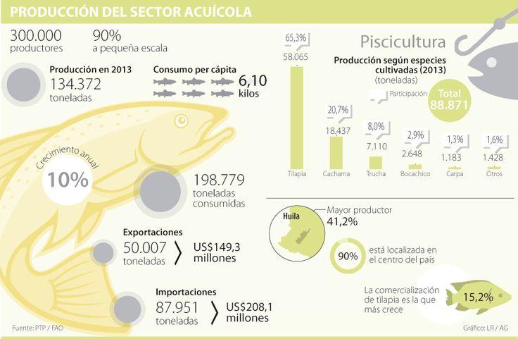 Formalización e innovación serán las claves para potencializar la piscicultura