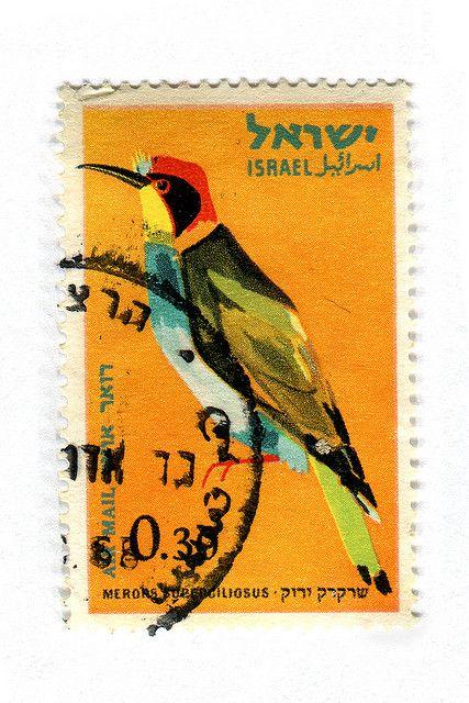 Israel Postage Stamp: Merops by karen horton, #bird #illustration