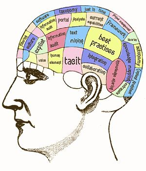 The brain of a knowledge worker
