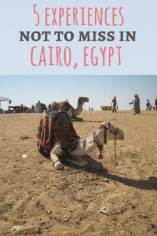 5 Experiences Not to Miss in Cairo, Egypt: A guide from an Egyptian blogger at Passport & Plates blog!
