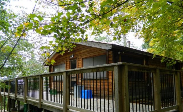 This rustic 2 bedroom cottage has a wilderness type setting. The interior western red cedar walls and ceiling add a warm feel, and the screened-in porch with table is ideal for the evenings. Relax on the large deck with new railings, and enjoy the peacefulness of the surrounding area.