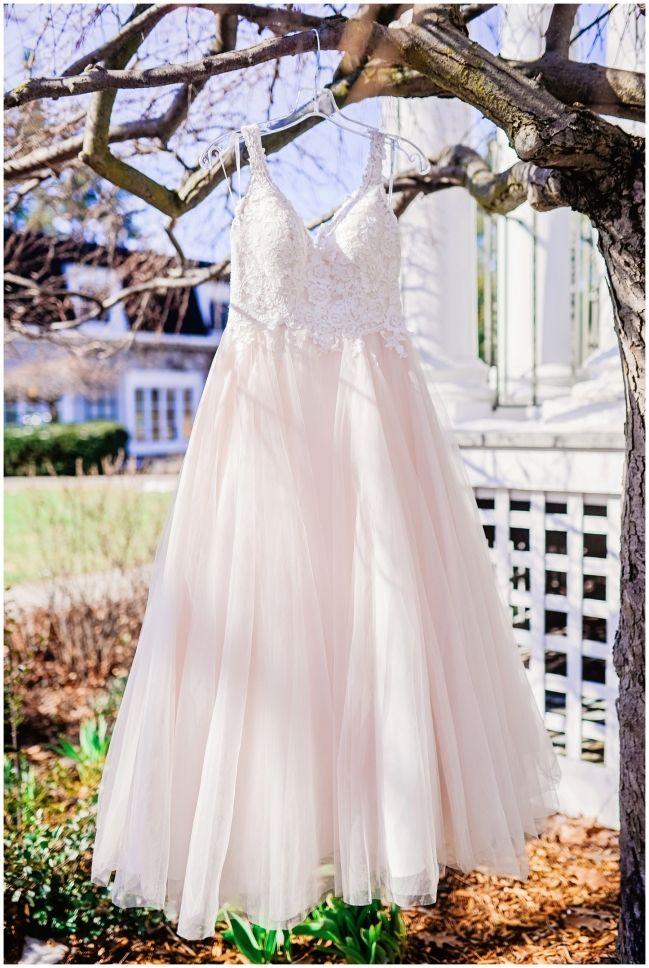 wedding dress hanging on a tree   Melissa Avey Photography